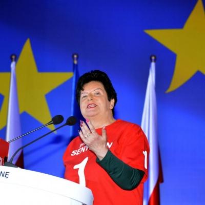 Wybory do Parlamentu Europejskiego 2014_19
